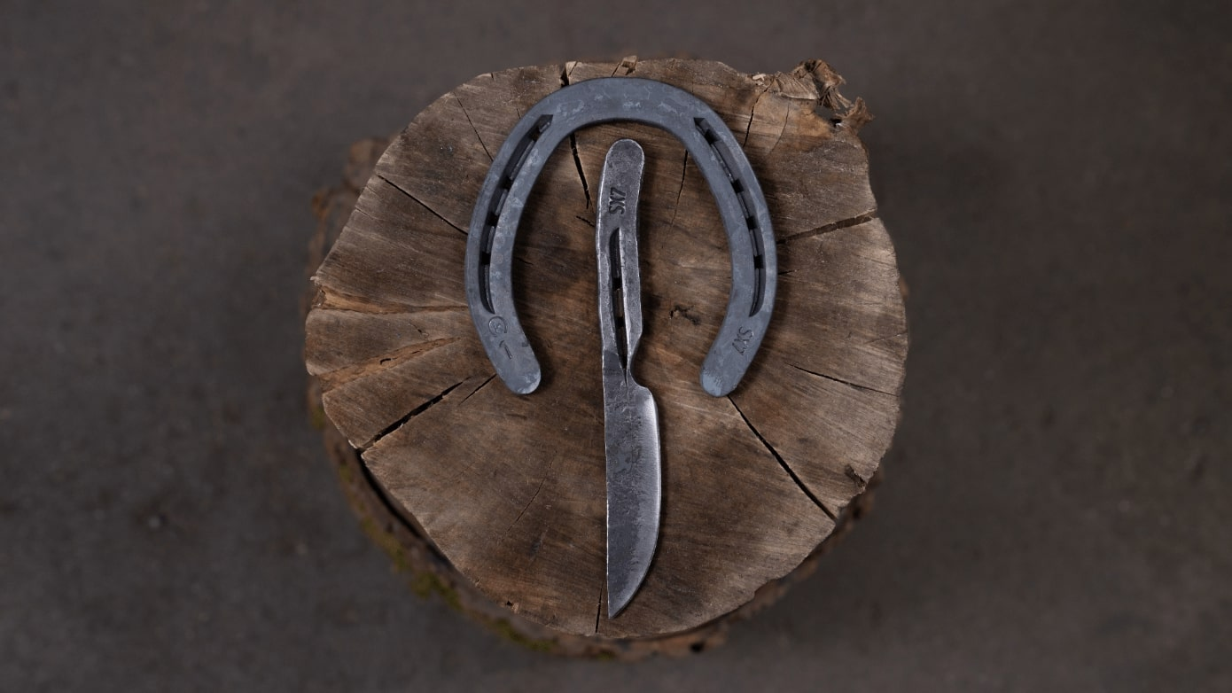 Horseshoe and knife on a stump, knife made in our horseshoe knife making class